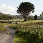 Balure cemetery, Loch Spelve, Mull
