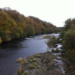 River Tees, Whorlton